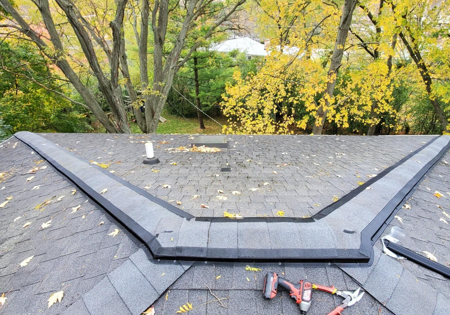 Ridge Vent Guard to Protect Your Home From Wildlife